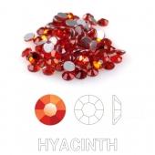 07 Hyacinth s6