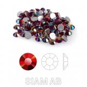 25 Siam Aurore Boreale s6