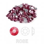 28 Rose s6